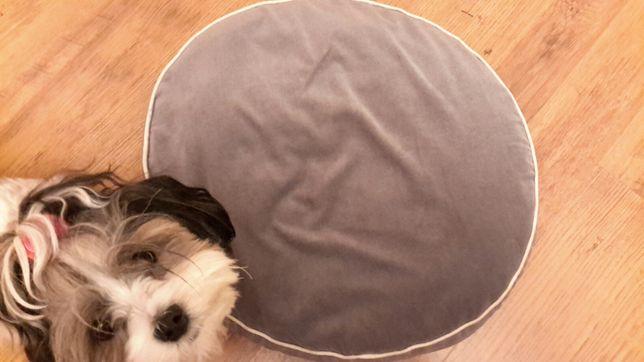 Poducha, legowisko dla psa lub kota
