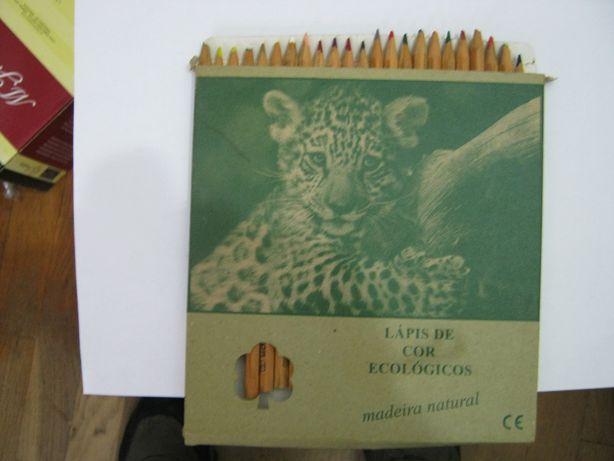 Caixa de Lápis de cor Ecológicos