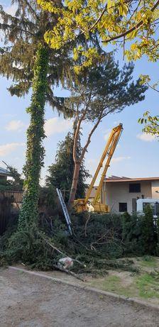 Wycinka drzew rebak do gałęzi wykaszanie trawy