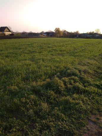 Продам земельный участок, приватизирован с.Дмитровка