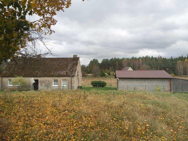 Dom na wsi, duża działka, urocza okolica