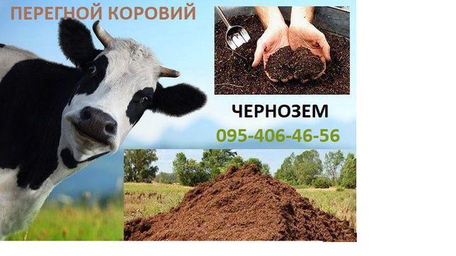 ЧЕРНОЗЕМ,Перегной коровий, конский,оперативно с доставкой в Харькове