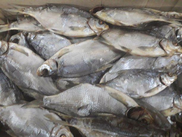 Лящ біляк ікряний ,плотва,риба вялена.Тарань.