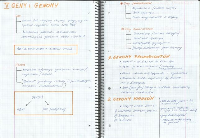 Notatki matura GENETYKA biologia rozszerzona
