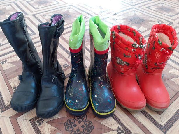 Пакет обуви, сапоги