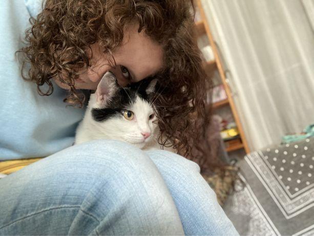 Profesjonalny petsitter (wyprowadzanie psów i opieka nad kotami)