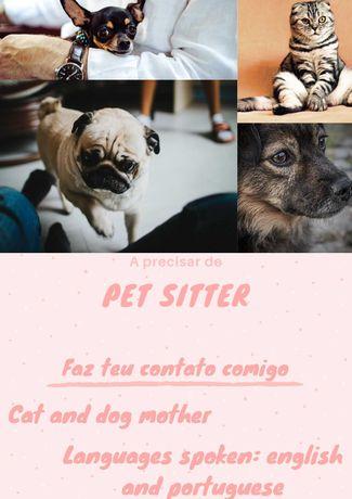 Pet sitter/dog walker in Olivais