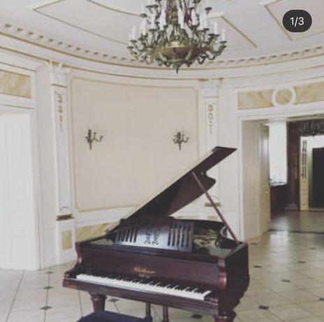 Fortepian Bluthner 1905 wiśnia po renowacji