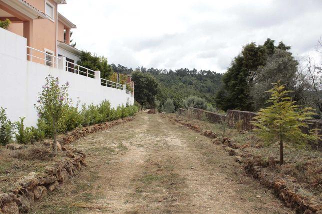 Terreno (quintinha) para venda em Assafarge Antanhol- Coimbra