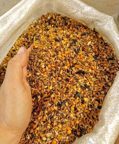 Продам Зерновые Смеси Кукуруза Горох Пшеница