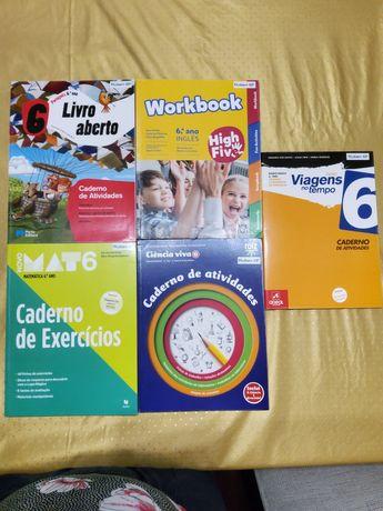 Cadernos de Atividade 6 Ano