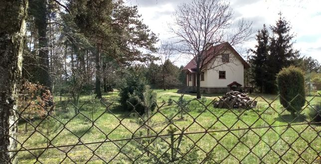Domek w Leśnym Zaciszu z własnym lasem