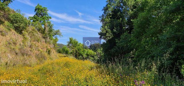 Vende-se terreno rústico Foz Farelo Monchique GS17435BC
