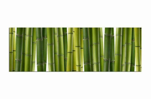Obraz panoramiczny Bambusy