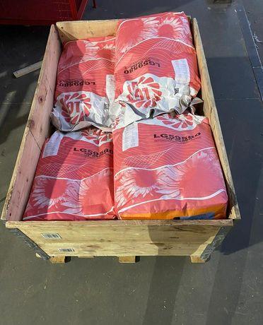 Лимагрейн 59580 семена подсолнуха насіння соняшнику подсолнечника