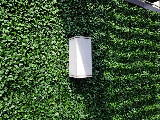 -60% Zielona ściana OGRÓD WERTYKALNY na balkon, taras, do biura i domu