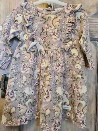 Newbie sukienka 80 kroliczki