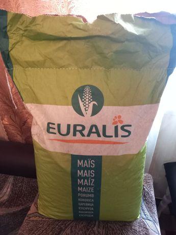 Кукуруза семена Euralis ES METHOD 2020