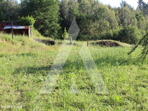 Terreno para construção em Paradela - Sever do Vouga