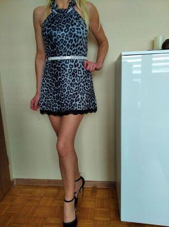 CUD sukienka tunika panterka mini cyrkonie koronka S M L GRATIS WYSYŁK