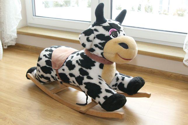 Krowa na biegunach