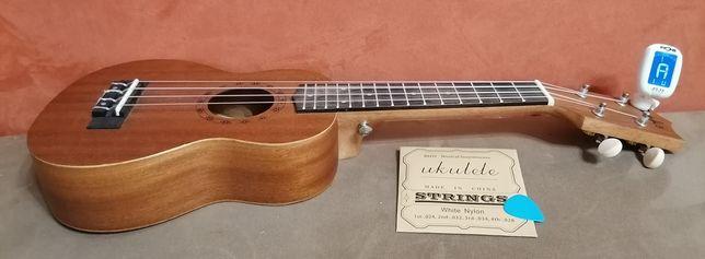 Окулеле, гавайская гитара.