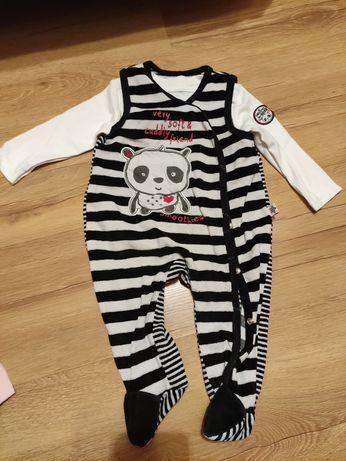Śpiochy panda pasy + biała bluzeczka, komplet chlopiecy 68
