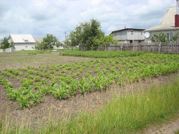 Продам земельный участок в городе Мена, Черниговской области