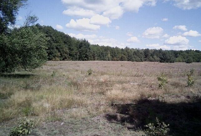 Продаж земельної ділянки с. Дудки урочище Побігаєве