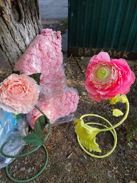 Розы для фотозоны, фотосессии.