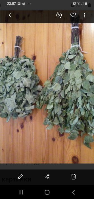 Продам веники из Закарпатья, для бани из дуба ,берёзы и липы, Мариуполь - изображение 1