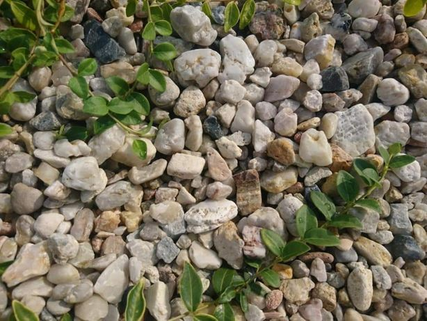 Żwir kremowy płukany miodowy bursztynowy do ogrodu do akwarium