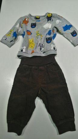 Spodnie sztruks h&m bluza zwierzaki