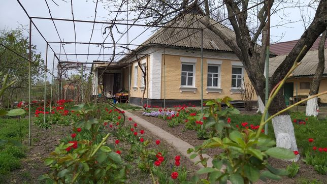 Кирпичный дом в Полтаве