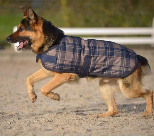 Derka dla psa outdoor, super wykonanie, ocieplana