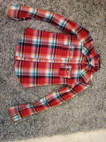 Koszula damska Holister