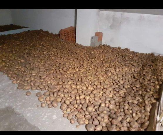 Batatas Agria e olho de perdiz