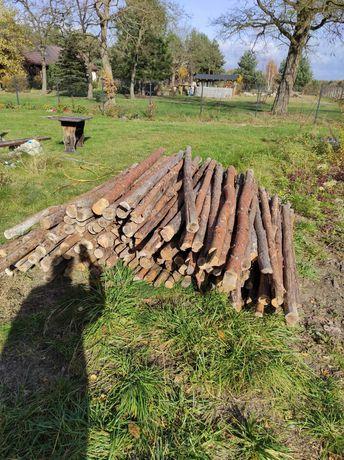 Stemple budowlane drewniane 2,8