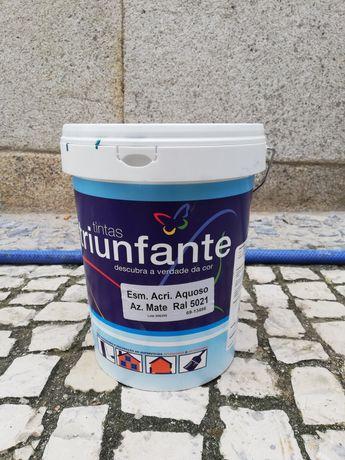Tinta esmalte aquoso 5L RAL 5021