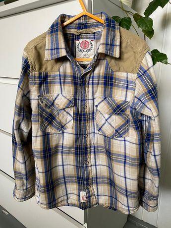 Koszula kappAhl dla chłopca 122