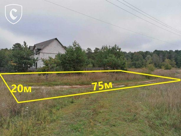 15 соток в селе Тарасовщина (рядом Гавриловка, Синяк, Демидов)