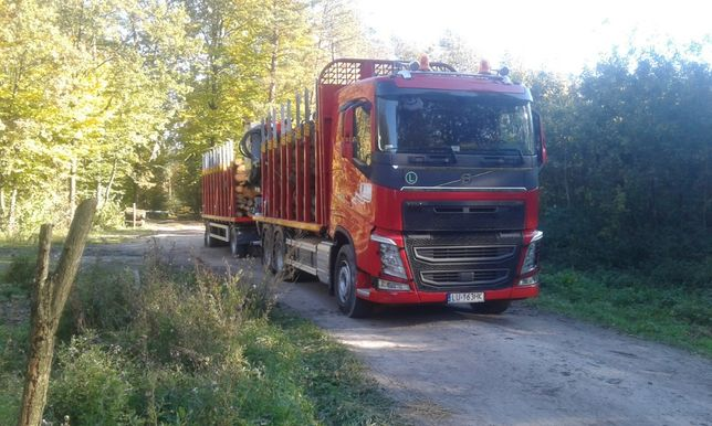 Transport drewna usługi HDS (lubelskie,podkarpackie,świętokrzyskie)