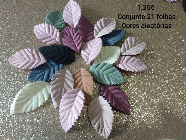 folhas várias cores