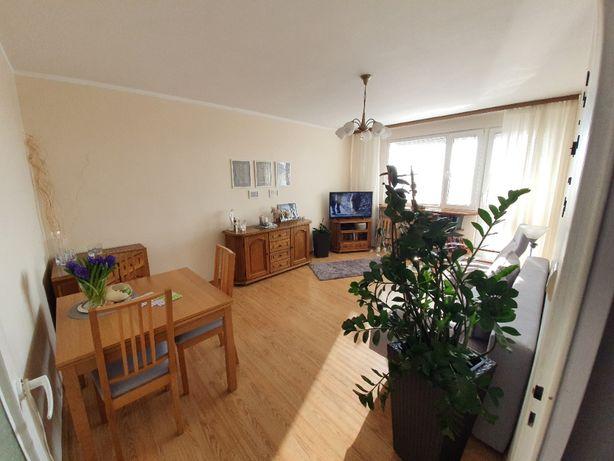 Mieszkanie 62,9m2 Golub-Dobrzyń Bez Pośrednika