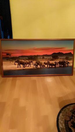 Obraz zdjęcie duży o wym. 103/53cm, ładny widok, stan idealny