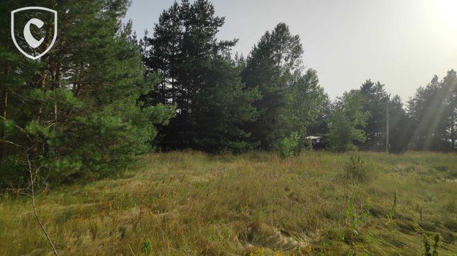 Живописный участок 7 соток с хвойным лесом! Низшая Дубечня