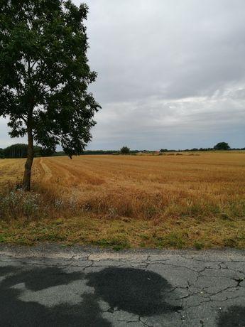 Działki rolnie 13 ha