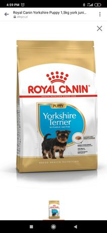 Royal Canin puppy yorkshire terrier