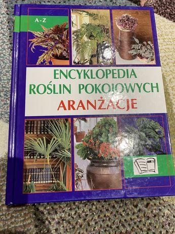 Encyklopedia roślin pokojowych aranżacje
