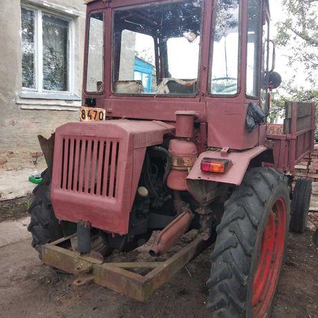 Трактор Т16 на ходу